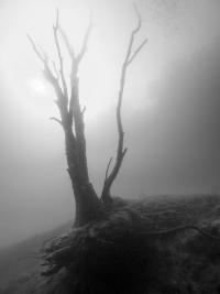 Kreidesee Hemmoor