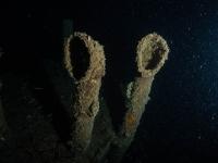 MS Peltastis bei Nacht